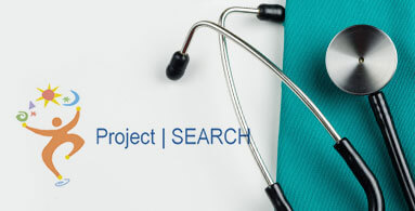project-search